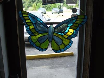 willards-butterfly.jpg